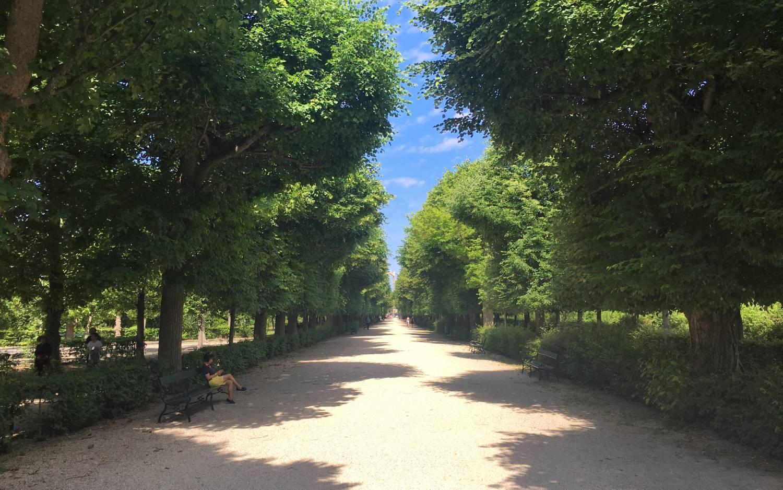 Schönbrunn Palace Gardens - Things To Do In Vienna