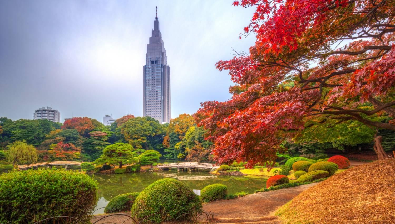Shinjuku Gyoen National Garden - Things To Do In Tokyo