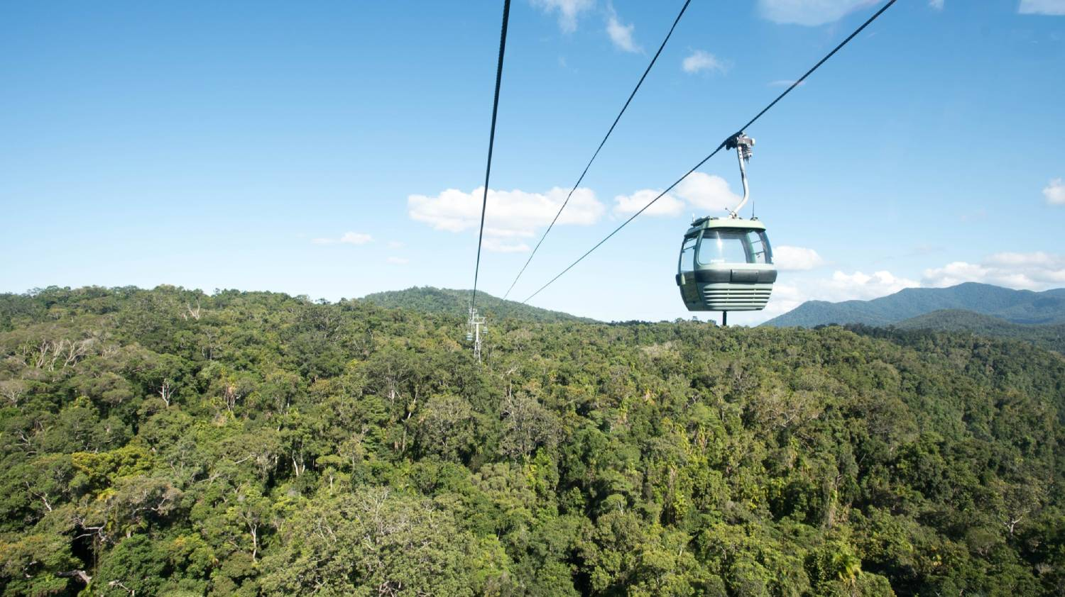 Skyrail Rainforest Cableway - Things To Do In Cairns