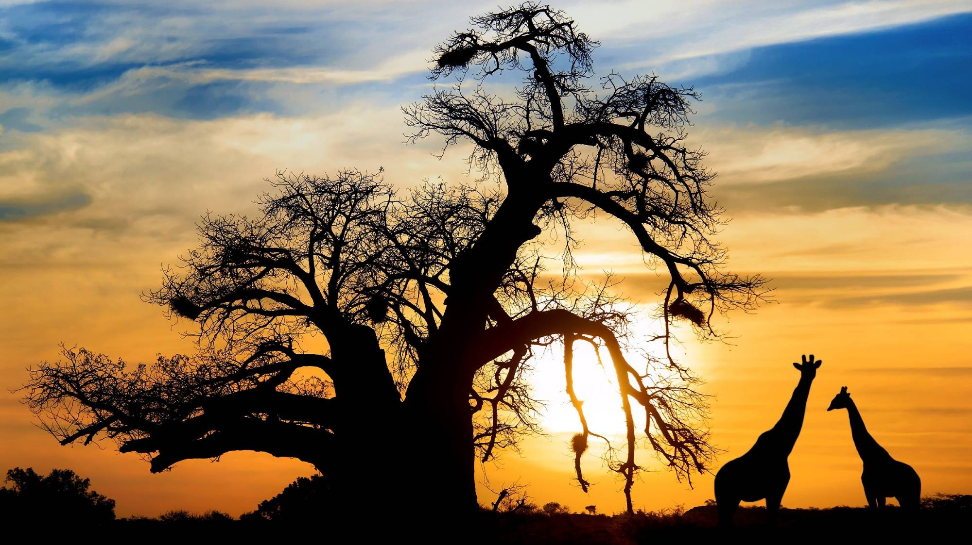 South Africa - Travel Blog