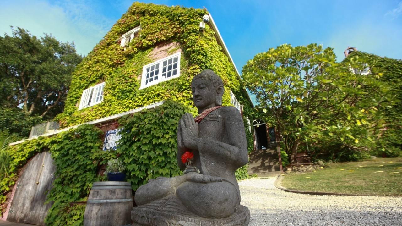 Stonyridge Vineyard - Things To Do In Auckland