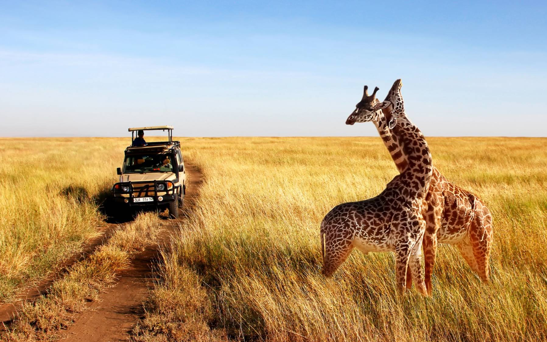 The Best Countries To Visit In Africa