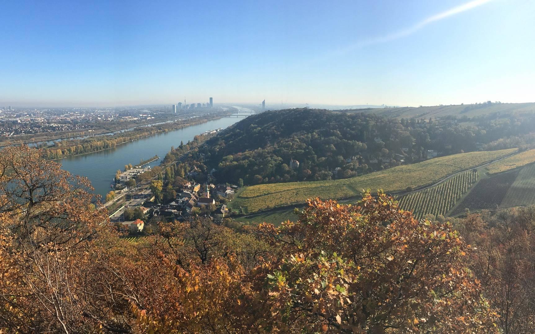 The Best Hiking Trail In Vienna (Stadtwanderweg 1A)
