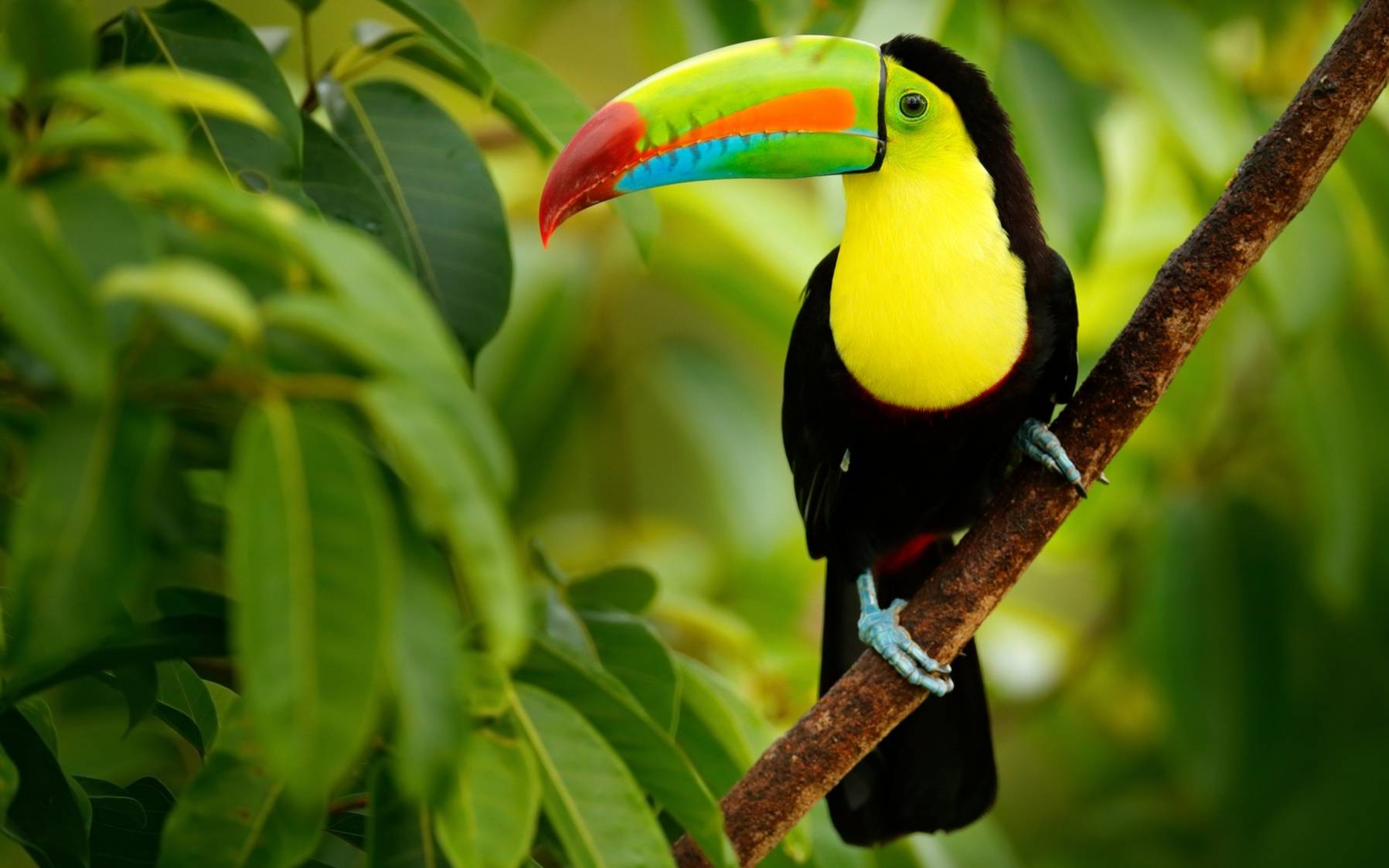 The Best Places To Visit In Costa Rica