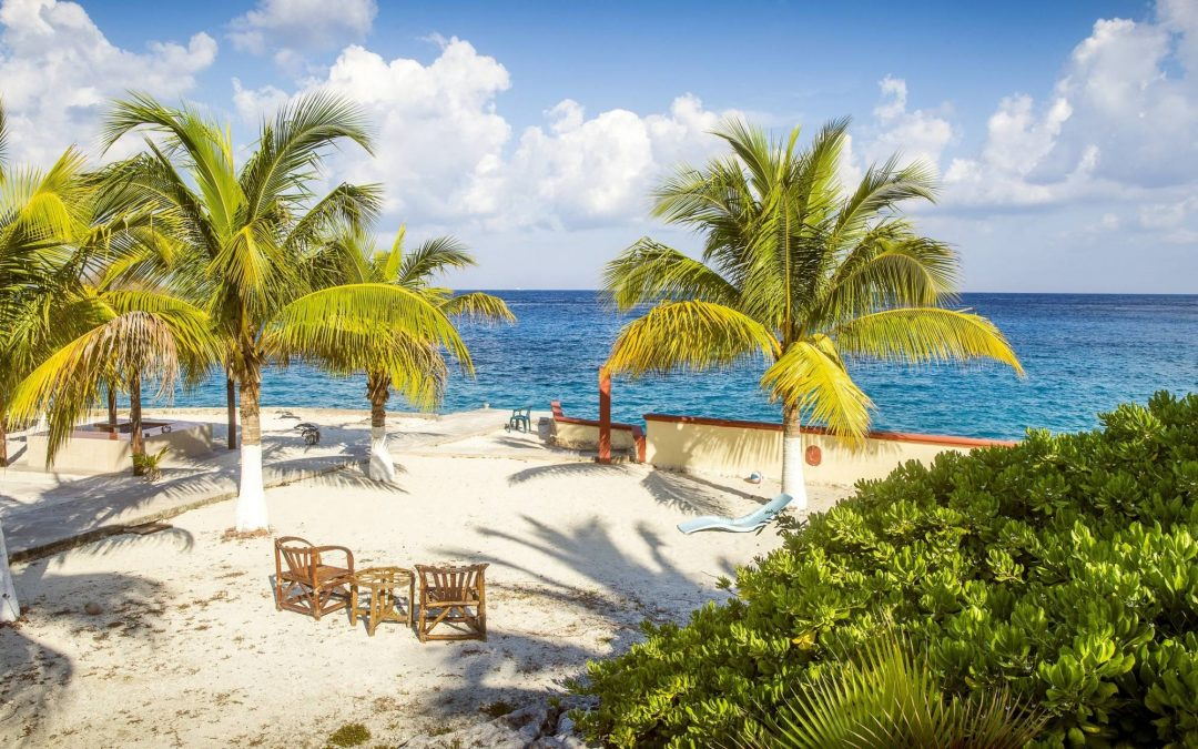 The Best Things To Do In Cozumel
