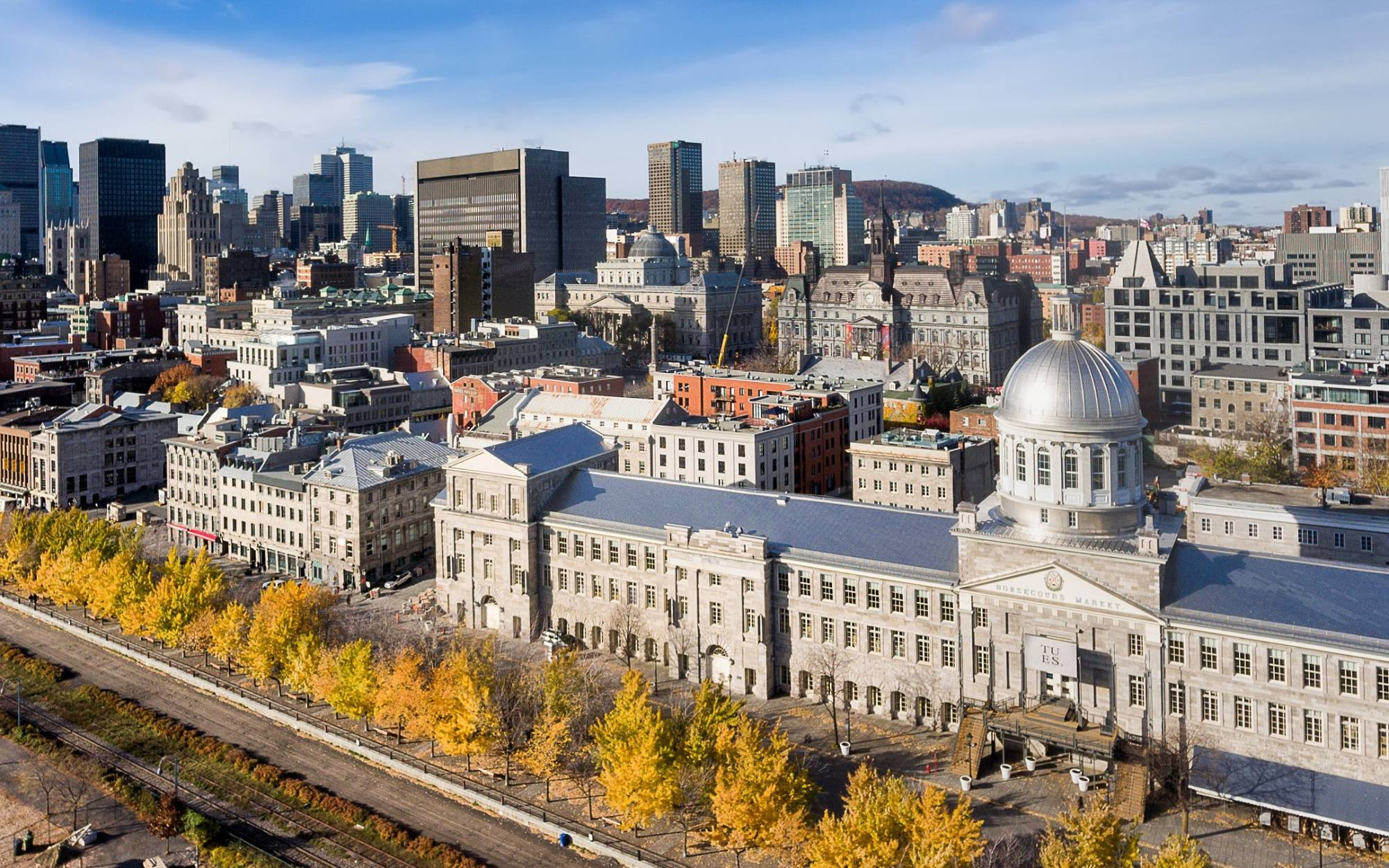 The Best Things To Do In Montreal