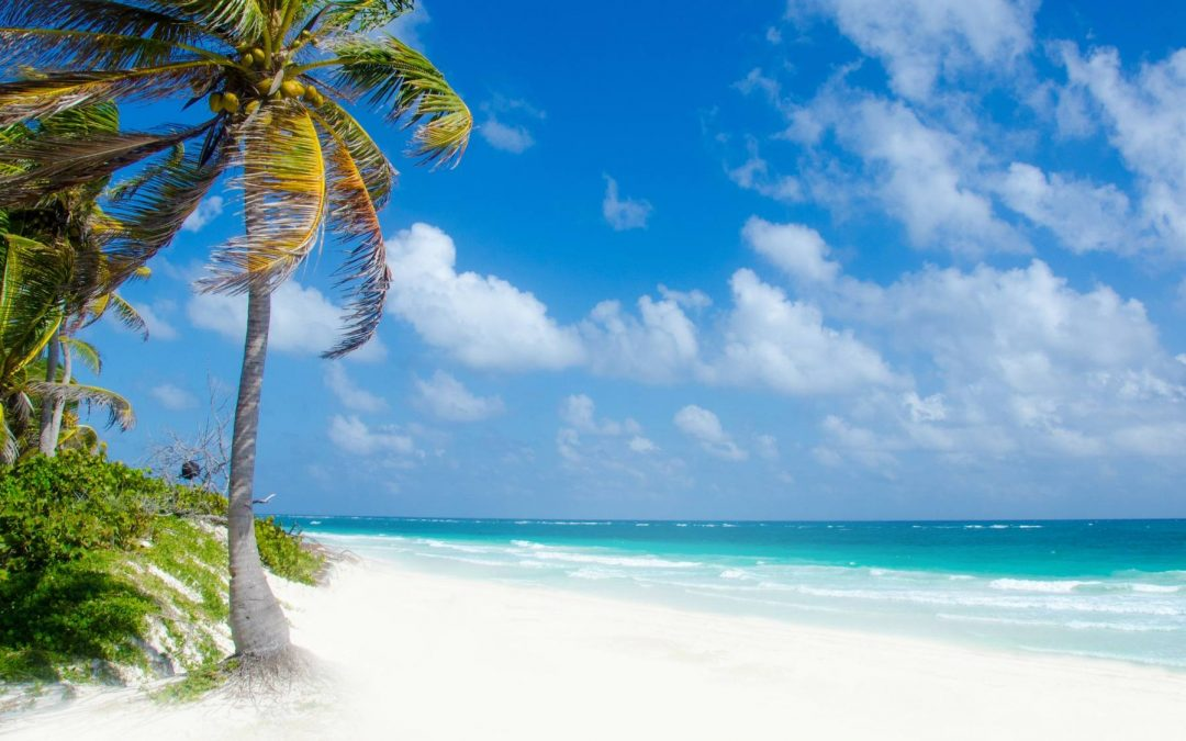 The Best Things To Do In Playa del Carmen