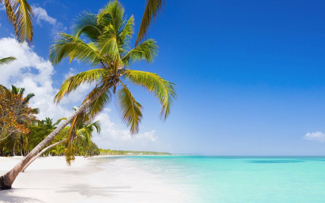 The Best Things To Do In Punta Cana