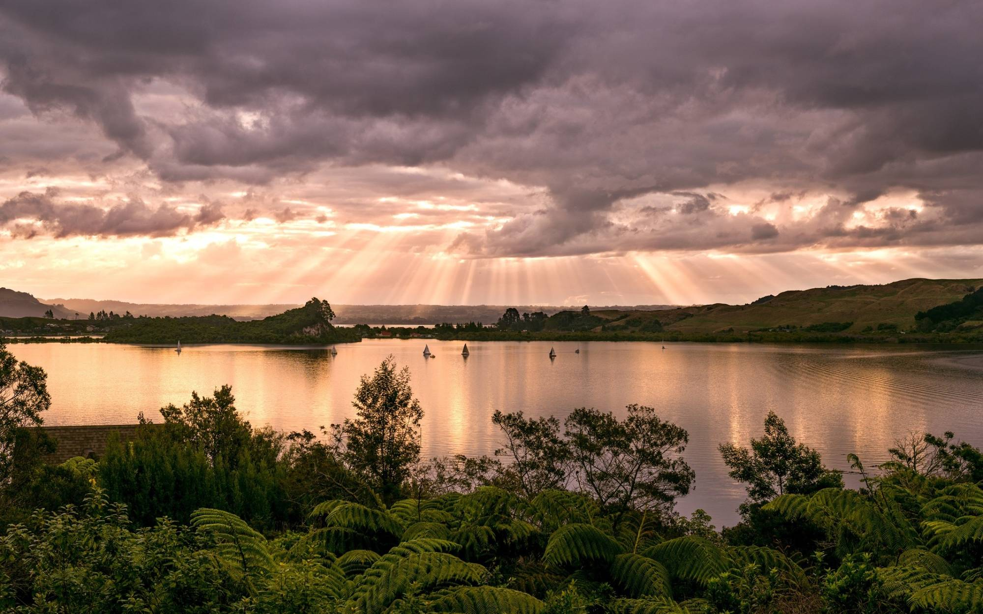 The Best Things To Do In Rotorua