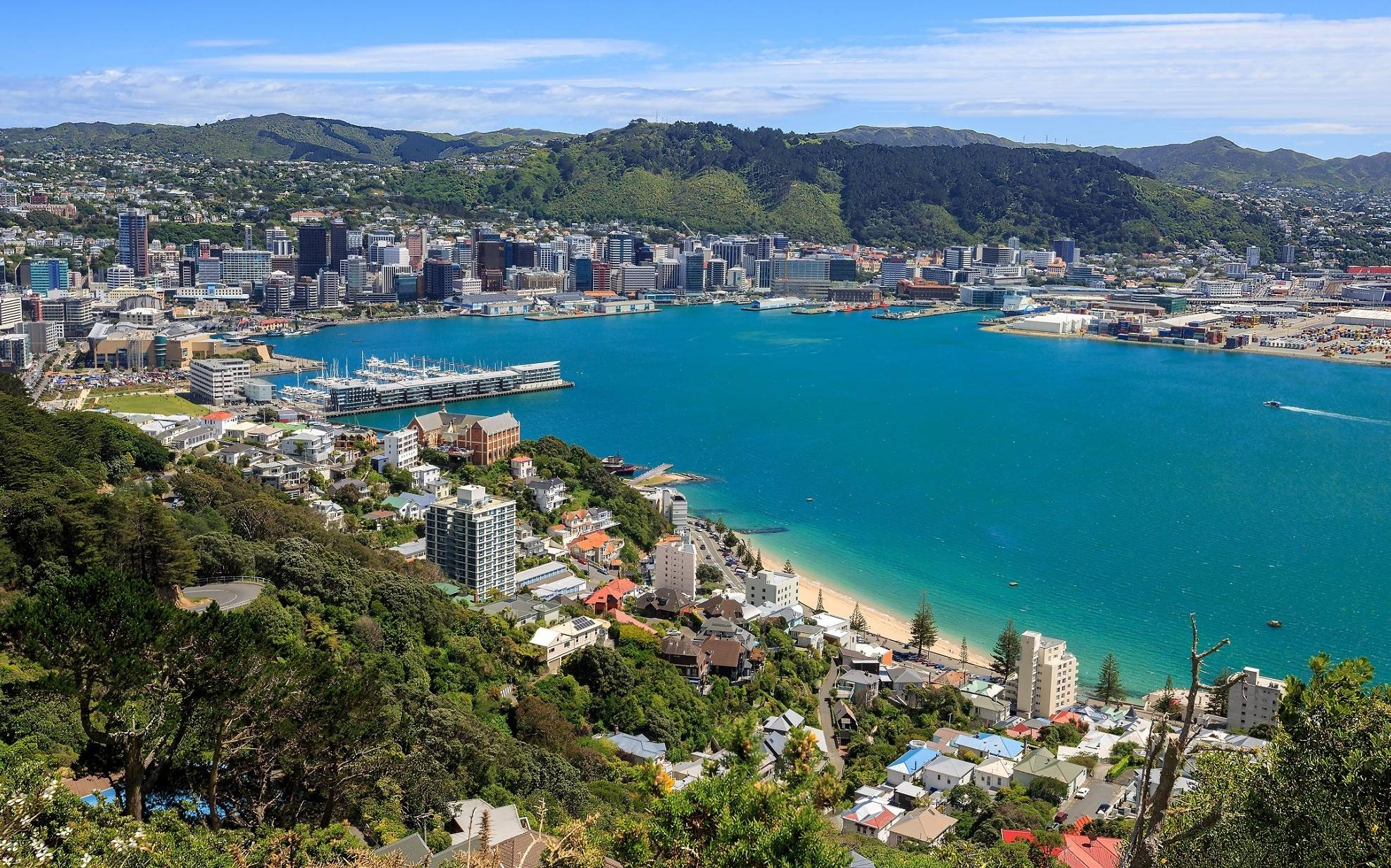 The Best Things To Do In Wellington