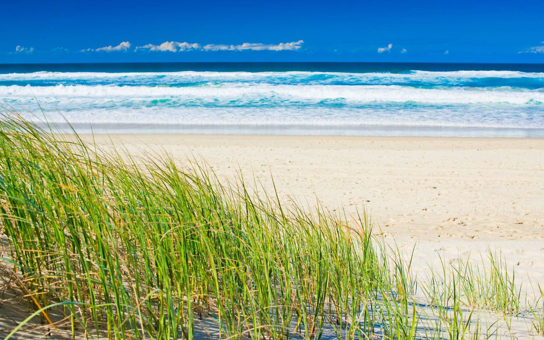 The Best Things To Do On The Gold Coast