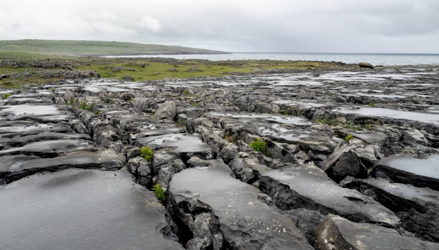 The Burren - Things To Do In Galway