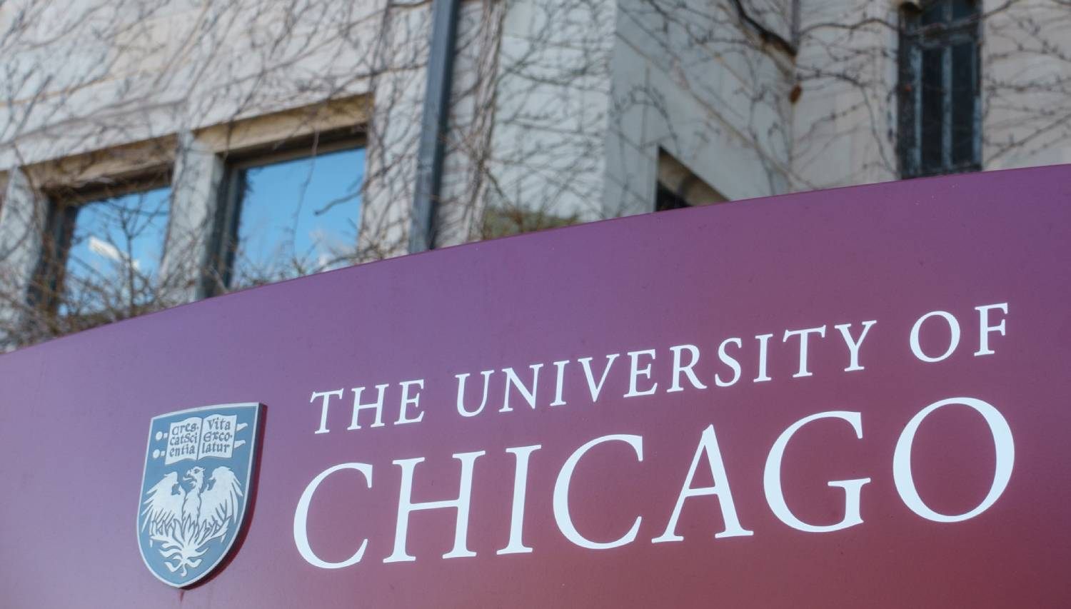 University of Chicago - Things To Do In Chicago