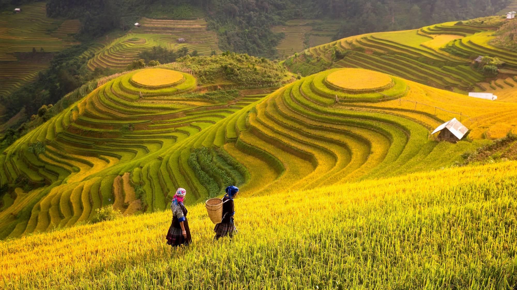 Vietnam - Travel Blog