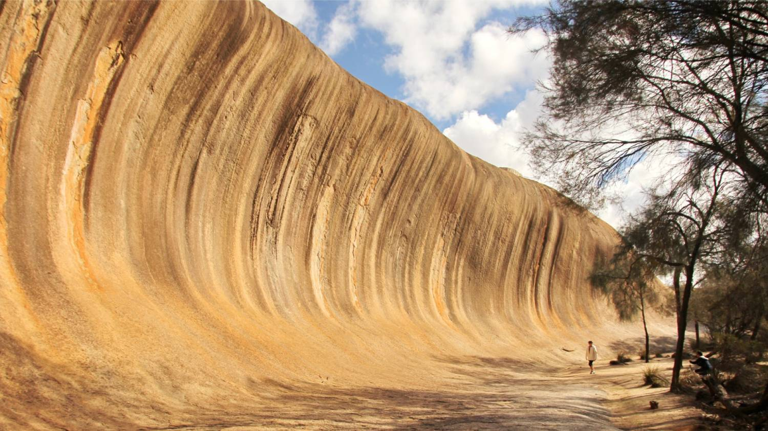 Wave Rock - Things To Do In Perth