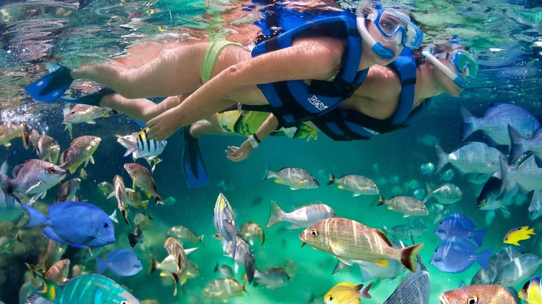 Xel-Ha - Things To Do In Playa del Carmen